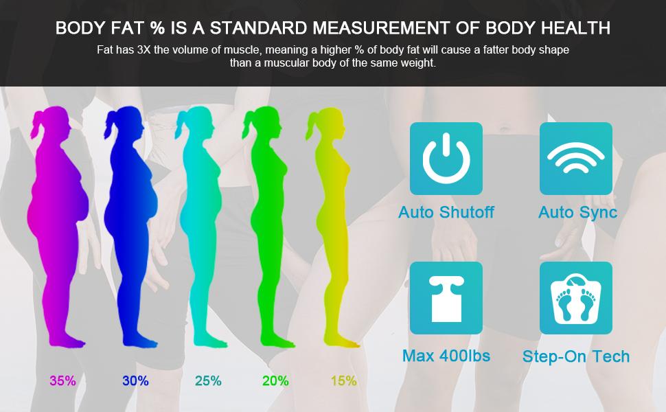 Body Fat Scale
