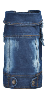 Cool Blue Dog Jeans Jacket