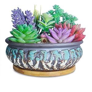 7 Inch Succulent Pots