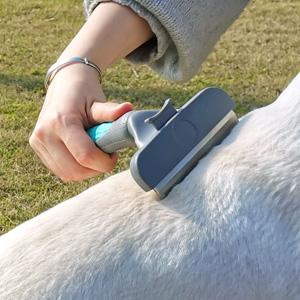 dog hair remover brush