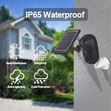 IP65 Waterproof  Camera