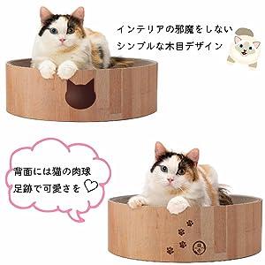 猫 猫壱バリバリボウル