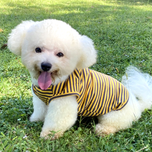 dog clothes striped doggy shirt classic