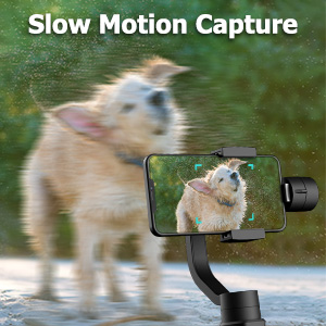 gimbal stabilizer video vlog travel sport fast follow youtube stable smooth Panorama Tracking