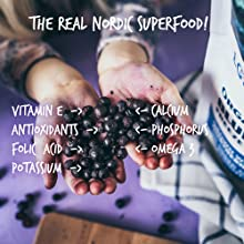 antioxidants vitamins Nordic forest