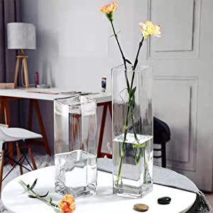 first use extend care glass vase square cube