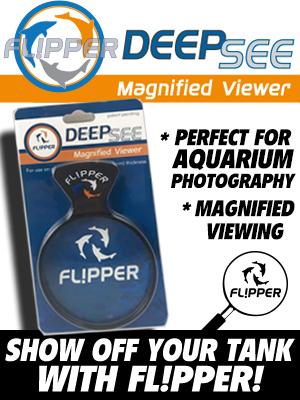 Flipper FL!PPER Deepsee Deepsea Magnified Viewer aquarium tank tanks decor coral reef viewers