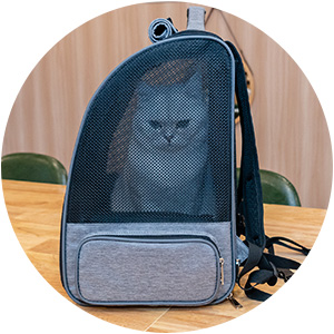 Ventilated Design Pet Backpacks Carrier with Cushion Back Support for Travel Hiking Outdoor Use