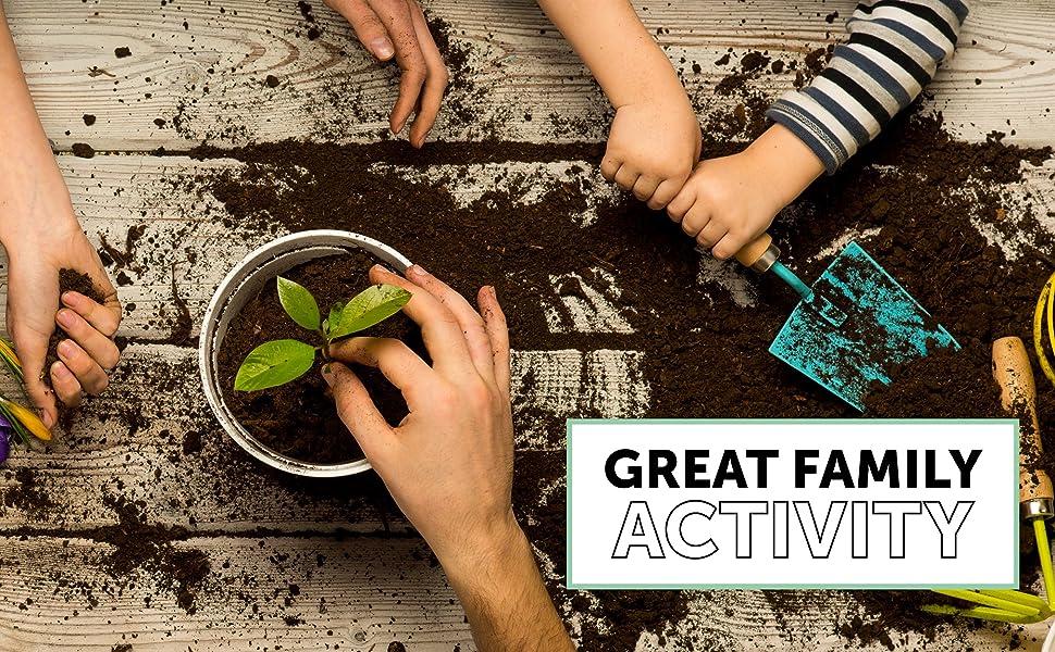 indoor herb garden kit gift beginner seeds pots basil chives parsley cilantro thyme gardening plants