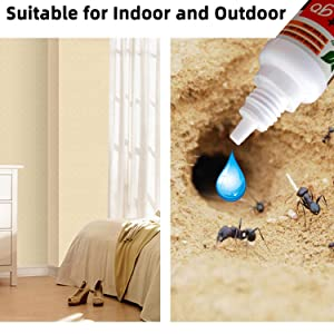 Suitable for Indoor and Outdoor