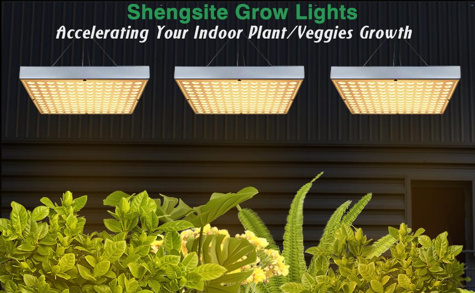 Grow Tent Bonsai Vegetable Growing Hydroponics Flower Indoor Greenhouses Led Grow Light For Indoor Plants Upgrade