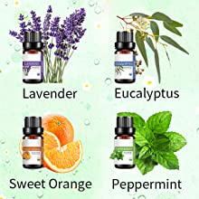 lavender essential oil sweet orange essential oil eucalyptus essential oil peppermint essential oil