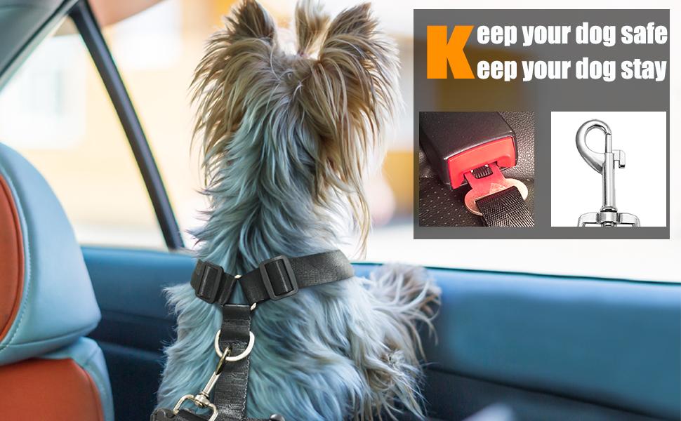 dog vest for car traveling waking training black blue pink red