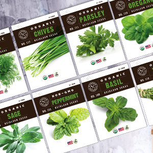 10 herb packets