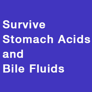 Survive Stomach Acids and Bile Fluids
