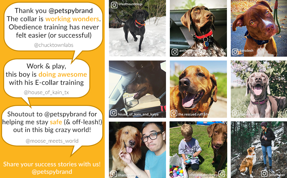 PetSpy Happy customers and their well trained dogs