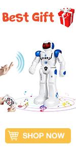 RC Smart Robot Toy