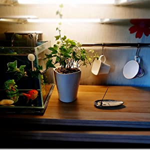 香炉は美しく見え、家のあらゆる部分を飾ることができます。発火、新鮮な空気、快適な睡眠、あなたはより快適な生活を送ることができます。