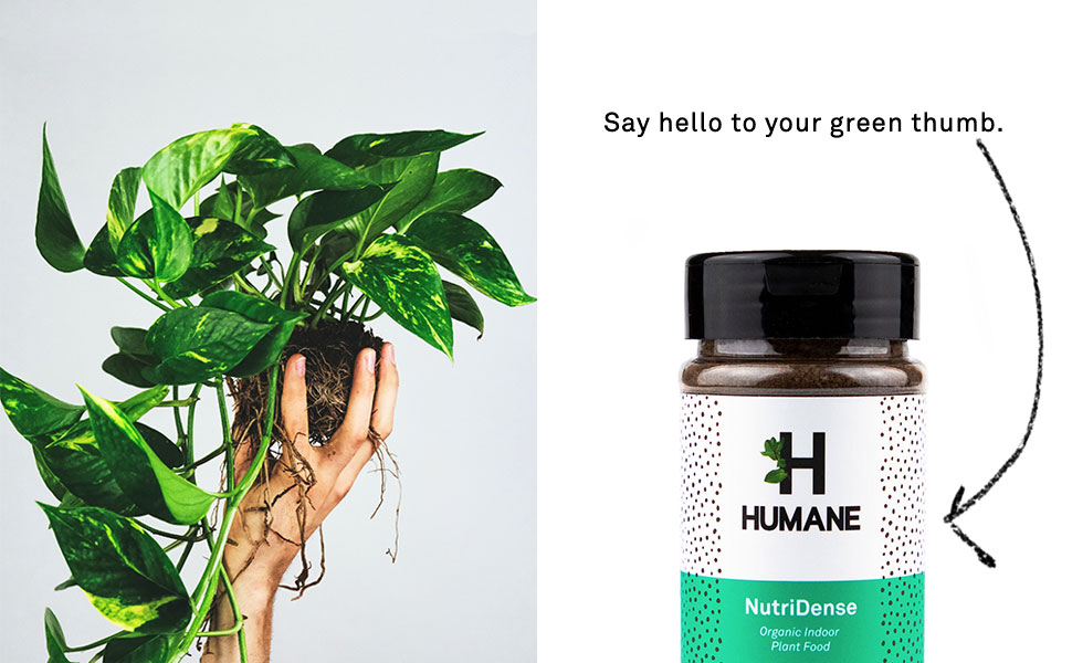 Humane, NutriDense, Green Thumb, Indoor Plant Food, Organic