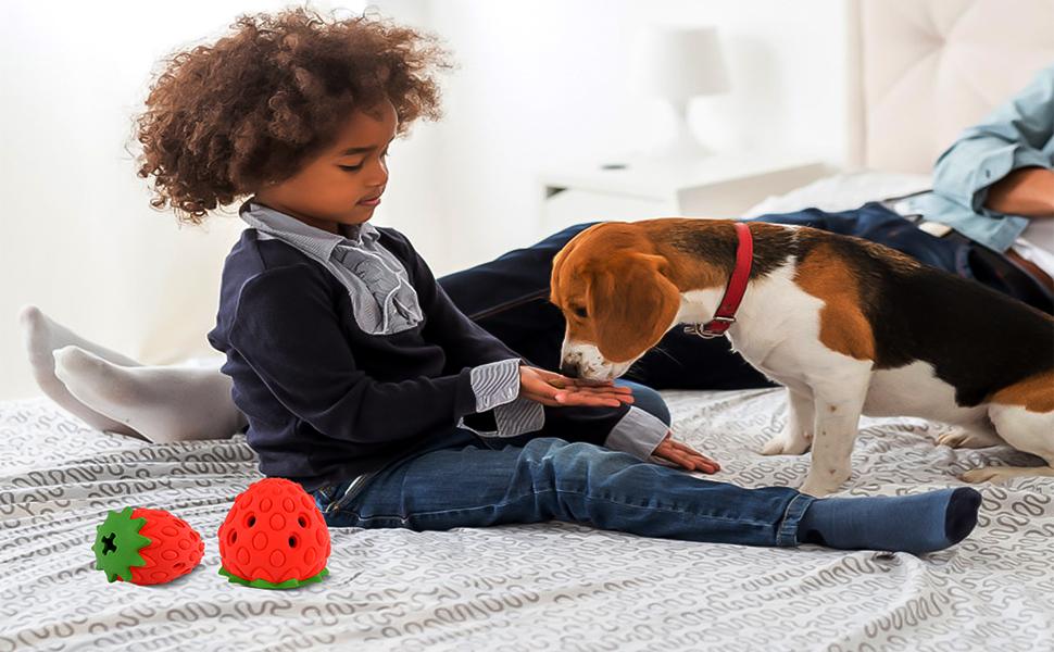 jouets pour chiens indestructibles