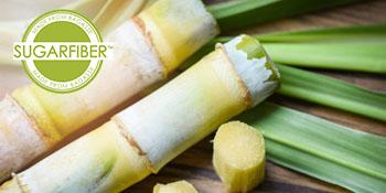 sugarfiber, sugarcane, sugar, bagasse