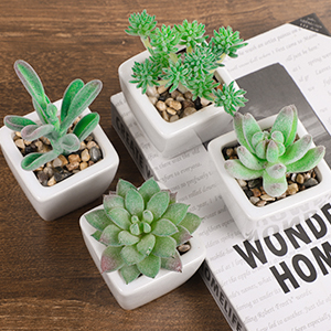 artificial succulents plants mini fake succulents faux succulents small face succulents