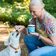 Dog Joint Supplement, Joint Health Supplement, Glucosamine For Dogs, Hip and Joint Care For Dogs