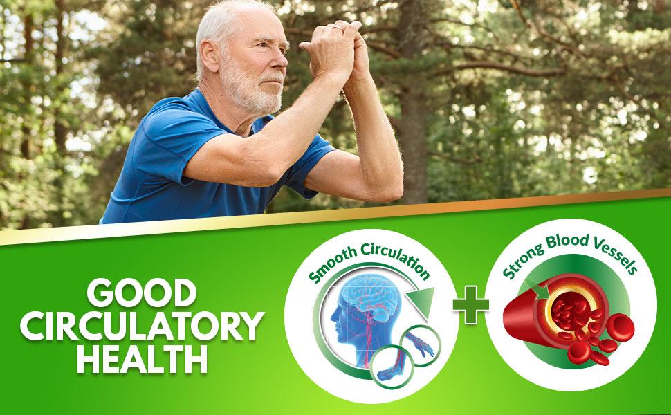 ginkgo-good-circulatory-health