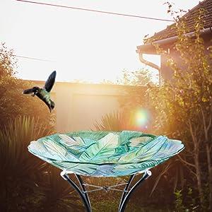 hummingbird birdbath