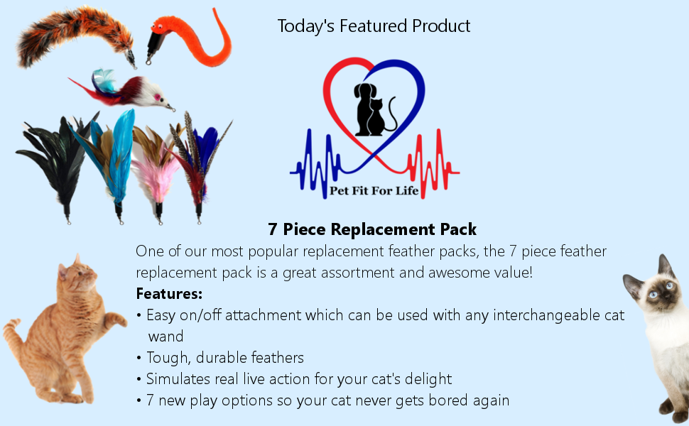 Cat Toy Feather Replacement Pack