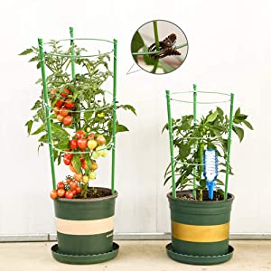 Plant support for garden