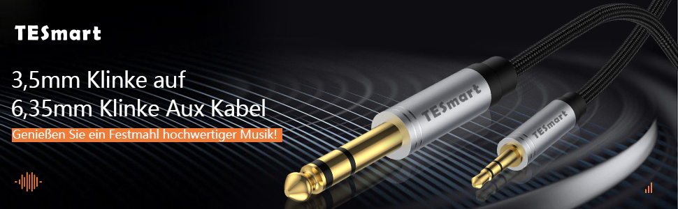 Tesmart 3 5mm Klinke Auf 6 35mm Klinke Aux Kabel 2m 1 Elektronik