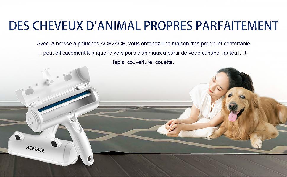 lit Peluches v/êtements pour Chien et Chat Brosse Portable pour Retirer Les Poils danimaux canap/é