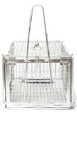 humane mouse trap live rat traps glue for mice and rats bulk see kill house cat squirrel cage animal