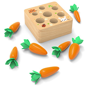 Wooden Toys for 1 Year Old Boys and Girls
