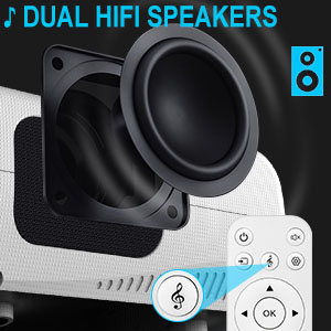 dual hi fi speakers