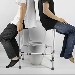 Handicap grab bars for toilets