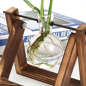 planter terrarium