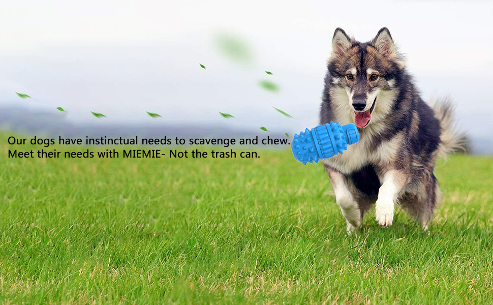 Dog Toys for Aggressive Chewers, Dog Chew Toy, Durable Natural Rubber Nearly Indestructible Toys