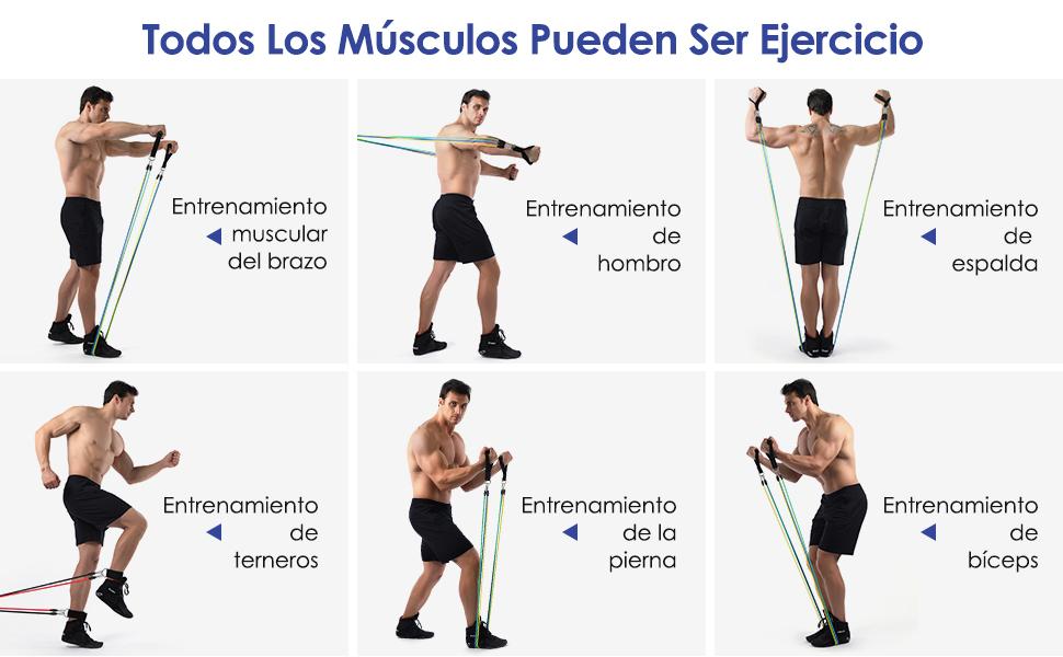 MeaMae care Gomas elasticas Fitness Bandas de Resistencia Cintas elasticas musculacion 12 PCS de 100 Libras con Anclaje de Puerta Correas de Tobillo ...