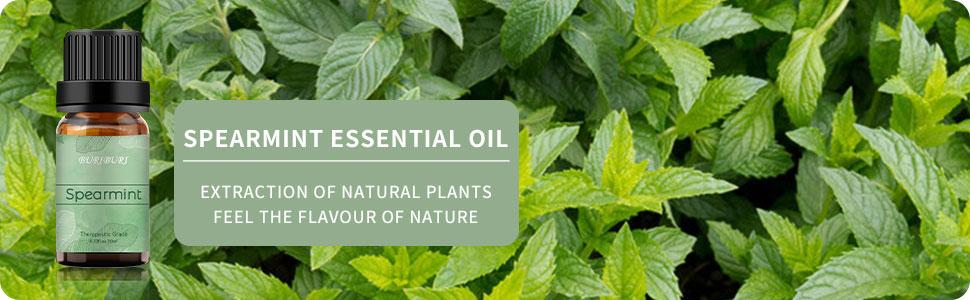 BURIBURI Spearmint Essential Oil