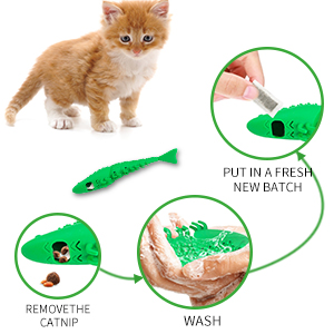 self cleaning cat toothbrush