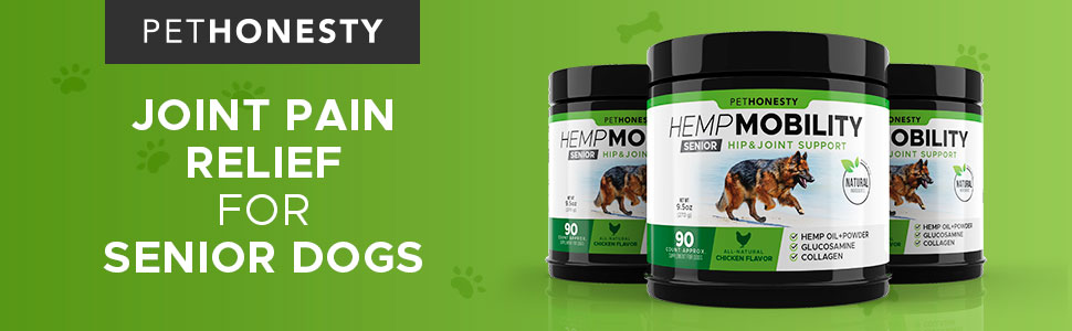 Joint Pain Relief for Senior Dogs