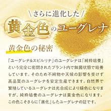 黄金色のユーグレナ