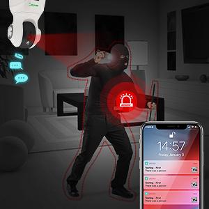 indoor camera alarm function