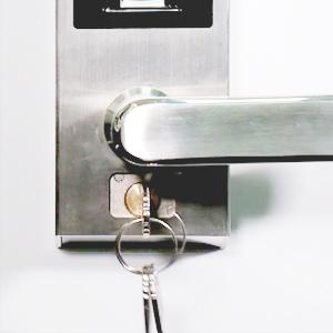 Hidden Backup Keyhole
