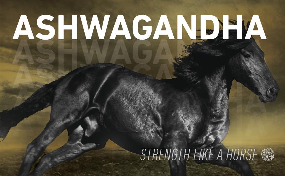 organic ashwagandha ashwagandha powder adrenal support organic anti-stress supplement depression