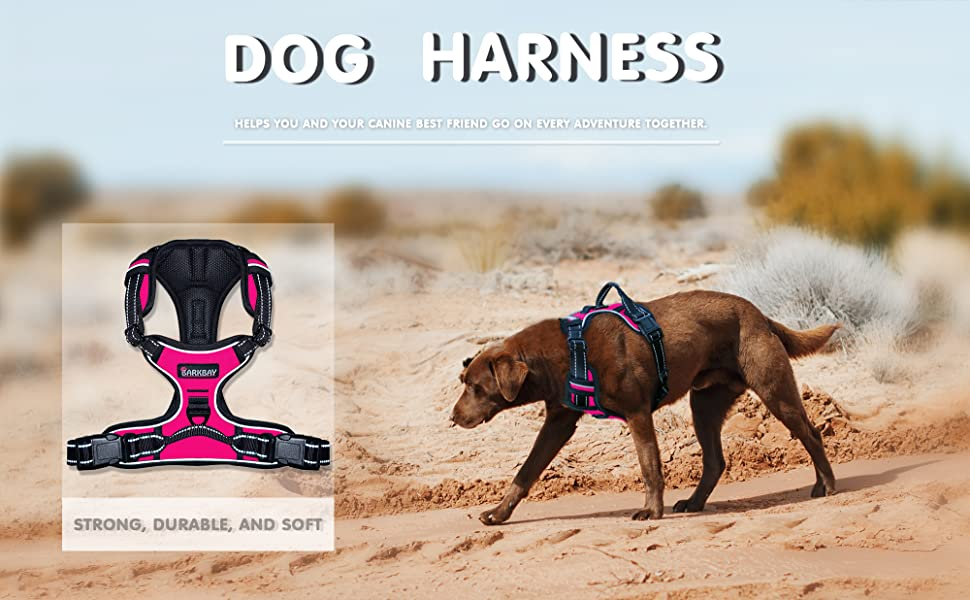 dog harness medium no pull dog harness small breed puppy harness dog leashes for extra small dogs