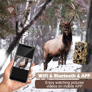 WiFi amp; Bluetooth