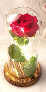 red infinity beauty and the beast colorful gold glass rose flower gift in glass dome